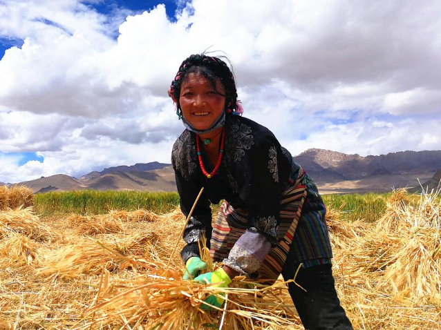 Tibet to receive 15.9-bln-yuan investment in poverty-alleviation projects in 2020