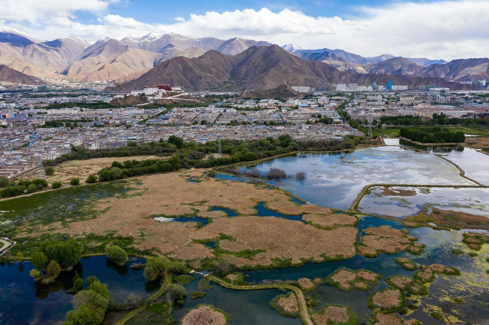 The Lung of Lhasa: Lalu Wetland
