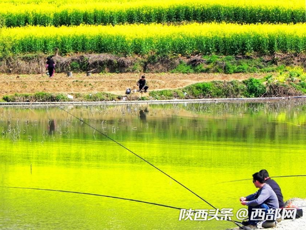 Photography: Qinling Scenery From Spring to Autumn