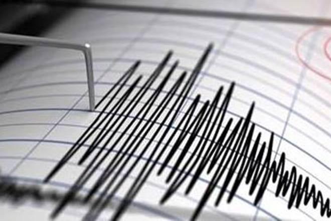 7.4-magnitude quake hits 705 km NE of Opotiki, New Zealand: USGS
