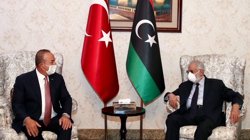 Turkey says it discussed lasting ceasefire during Libya trip