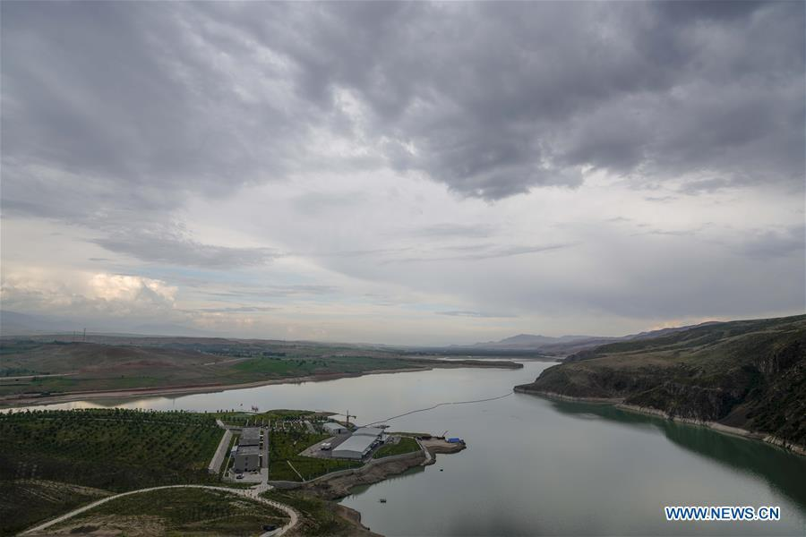 Company puts efforts into cold water fish breeding to help locals increase incomes in Xinjiang