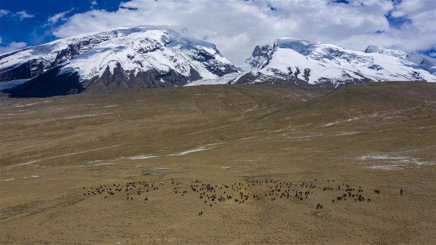 Scenery of Mount Muztagata on Pamir Plateau