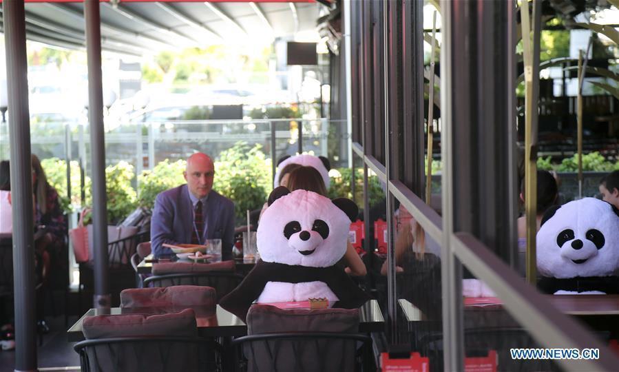 Ankara takes measures to help customers practice social distancing in restaurant