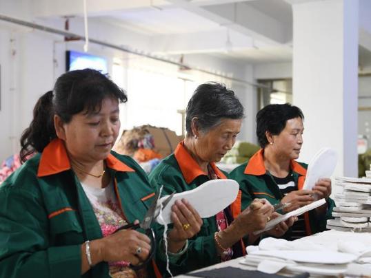 Poverty alleviation workshops increase poor household incomes in Gansu