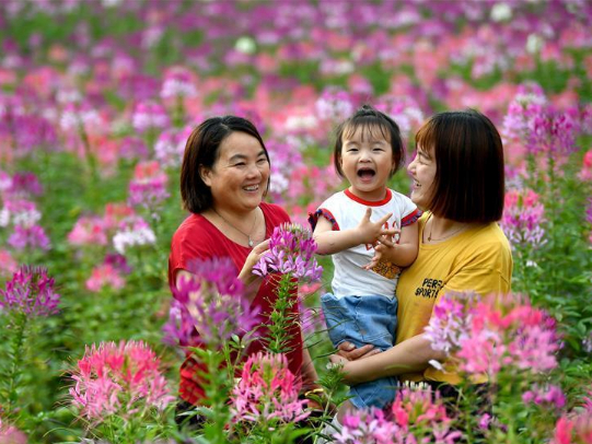 People enjoy their time at flower field