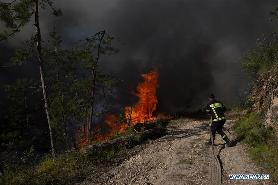 In pics: forest fire near village of Ramljani in Croatia