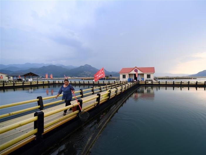 In pics: mariculture zones in Ningde City, SE China's Fujian