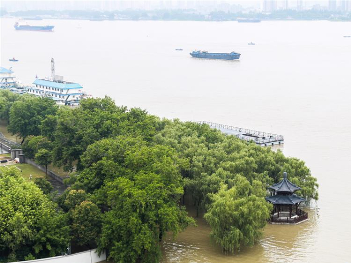 Jiangsu raises flood alert level to highest for Nanjing section of Yangtze River