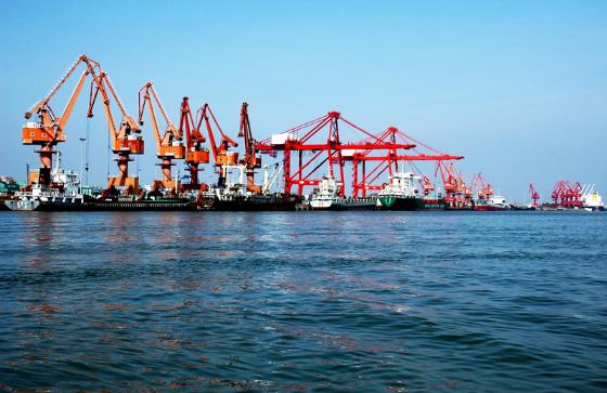 Video: Yangpu Economic Development Zone