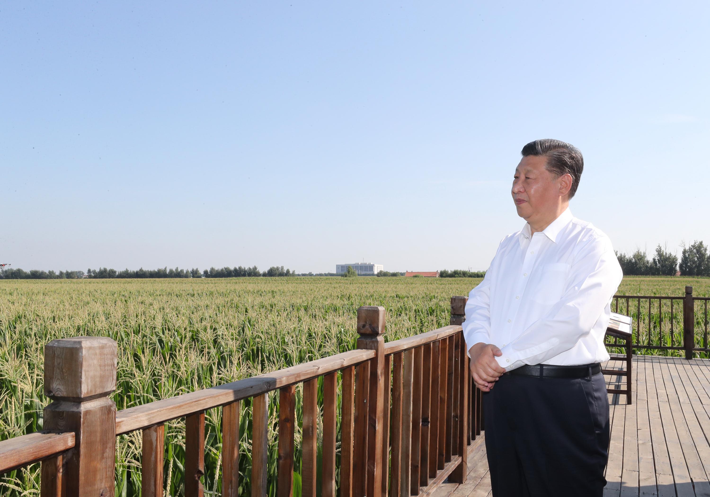 Chinese President Xi Jinping inspects Northeast China's Jilin Province