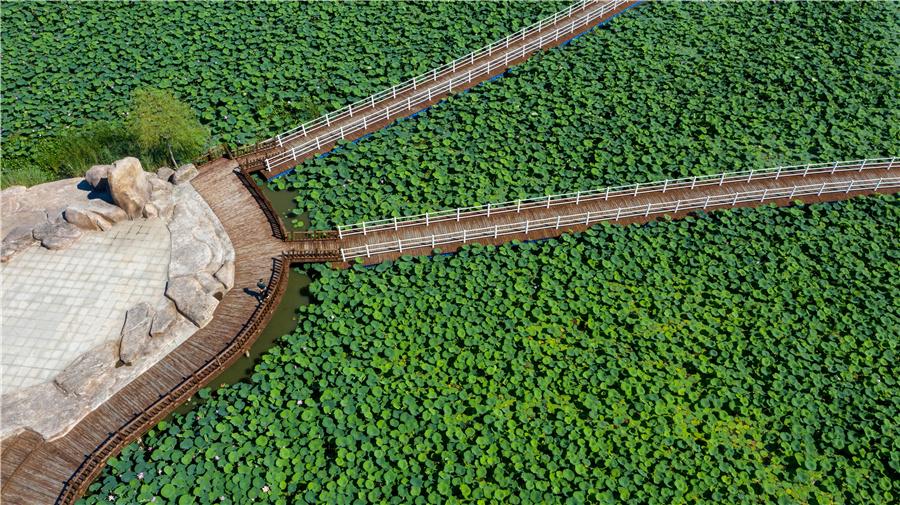 Chagan Lake achieves new luster in Jilin