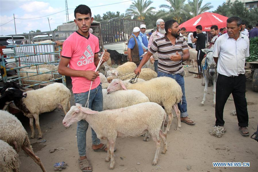 Feature: Gaza livestock sellers face heavy losses amid economic woes, pandemic