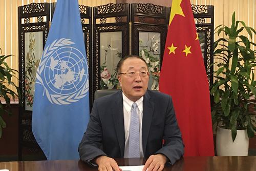 China firmly opposes hegemonism and power politics: envoy