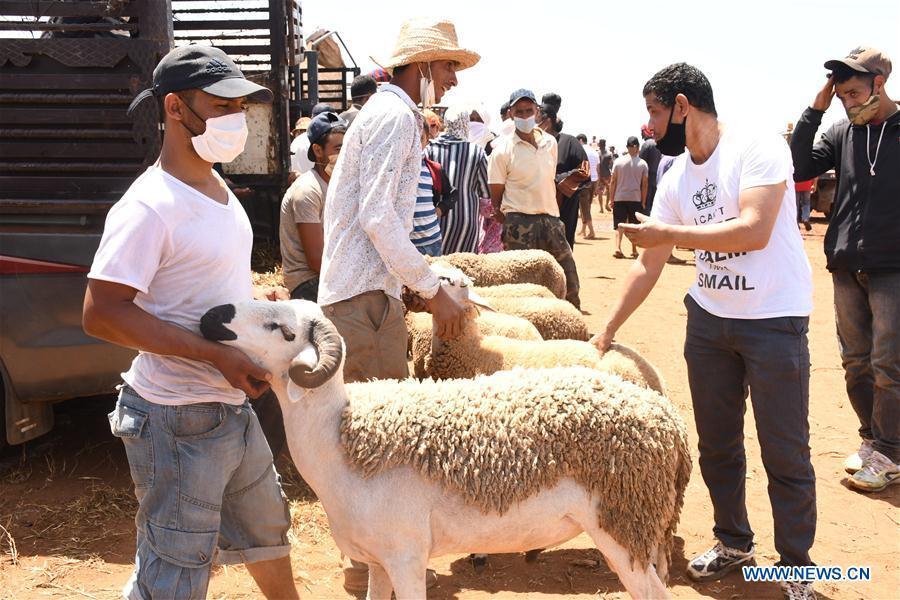 People buy sheep at livestock market ahead of Eid al-Adha in Rabat, Morocco