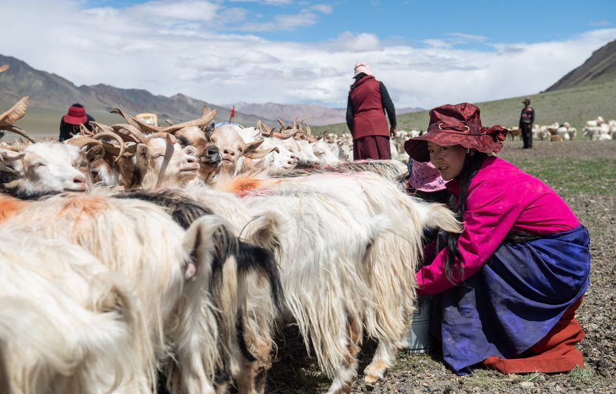 China sets up farmers' cooperatives in most impoverished villages