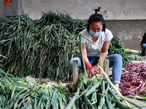 Urumqi ensures medicine, food supply amid resurgence of COVID-19