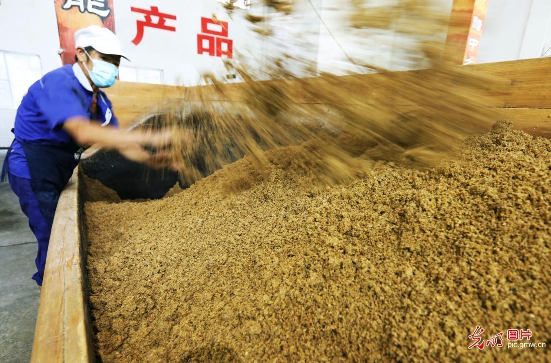 """Sun-dried"" vinegar made in a vinegar plant in Chishui City, southwest China's Guizhou Province"