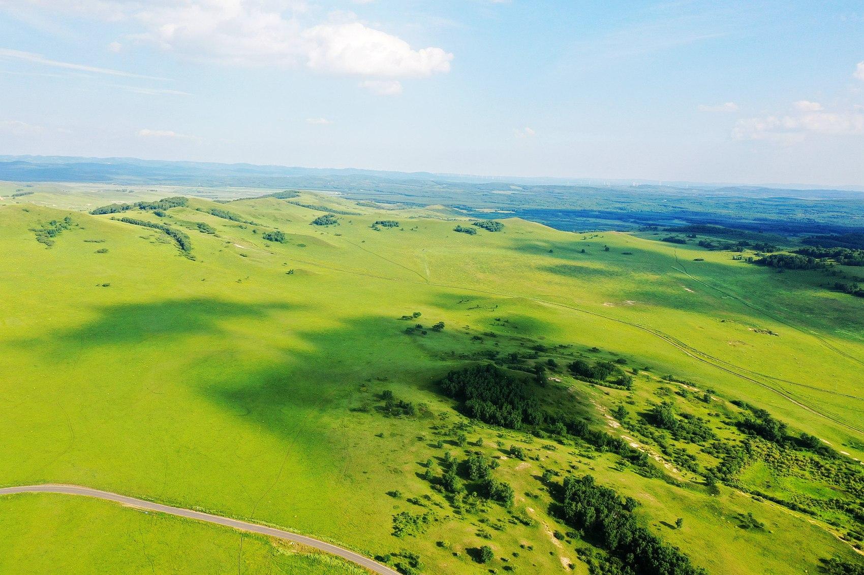 Inner Mongolia sees rising vegetation coverage of grasslands