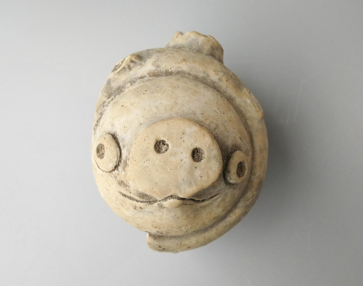 Ancient ceramic pig resembles movie star