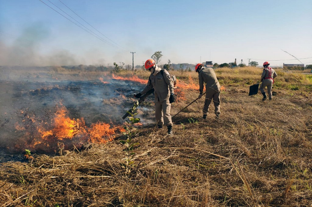Brazil firefighters race to contain wetland blazes