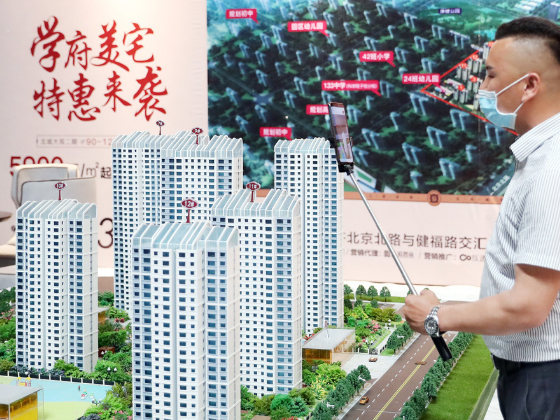 Price control can curb realty sector speculation