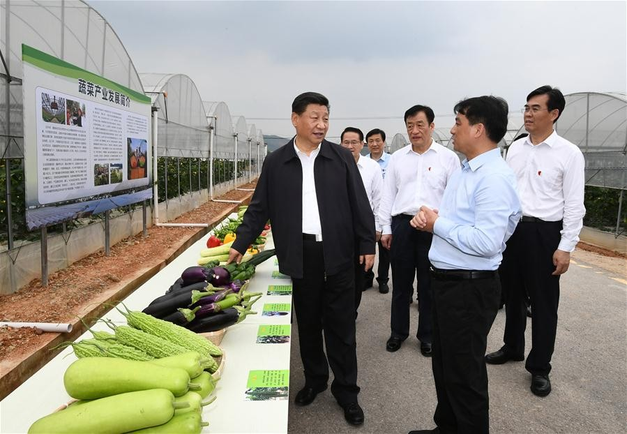President Xi's words encourage poverty fight in revolutionary base area