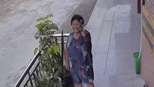 Grandmother shares daily routine with her granddaughter over surveillance equipment
