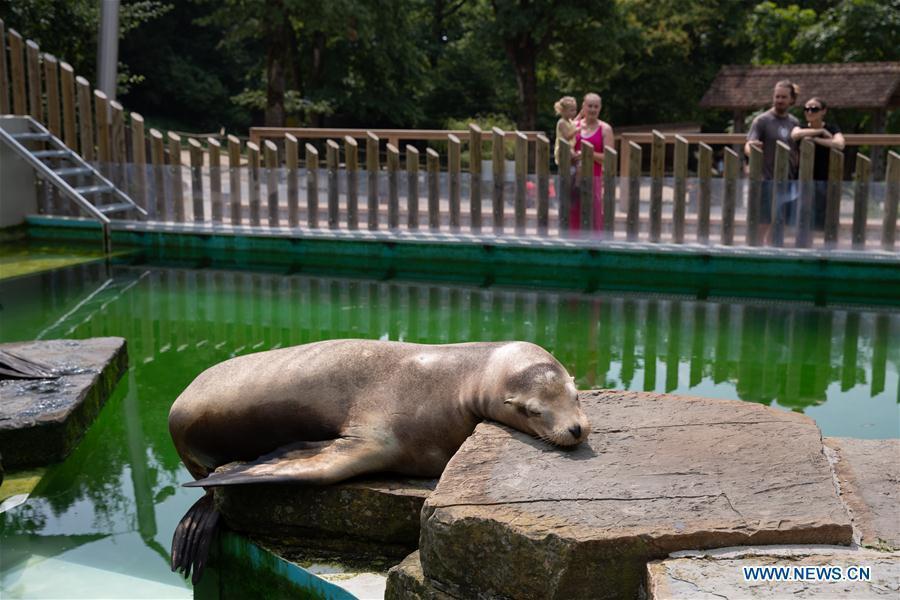 Tourists visit Ljubljana Zoo in Slovenia