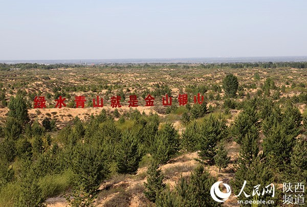 NW China's Shaanxi province turns Mu Us Desert into green land