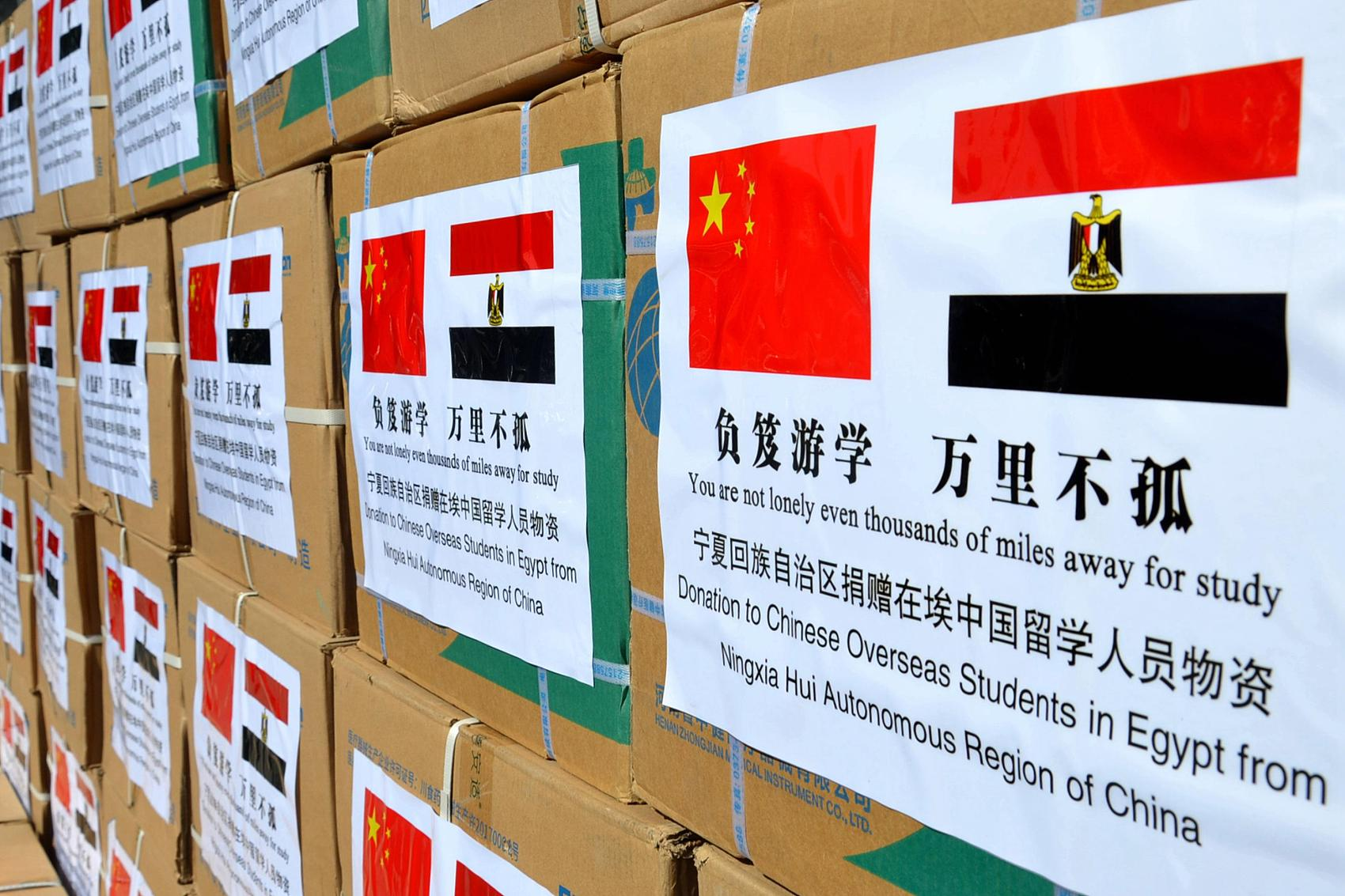 Chinese envoy calls for solidarity, cooperation in global fight against COVID-19