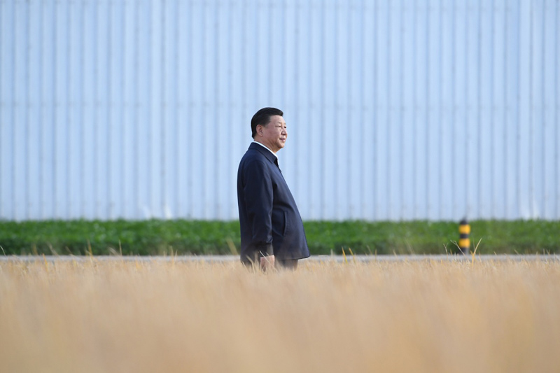 Key remarks from Xi on stopping the waste of food and promoting thrift