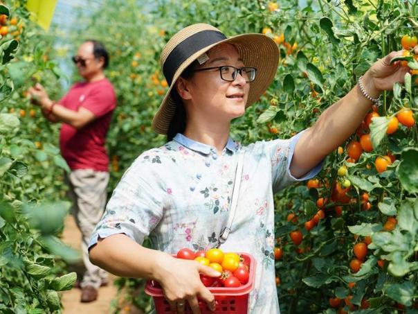 People enjoy better lives in Wangwan Village, Shaanxi
