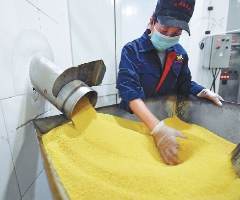 Shanxi's yellow millet go global