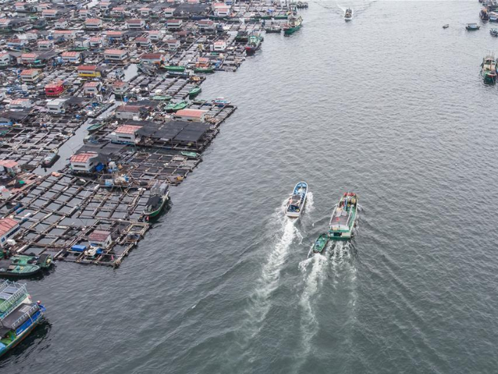 Fishing boats sail on sea as summer fishing moratorium ends