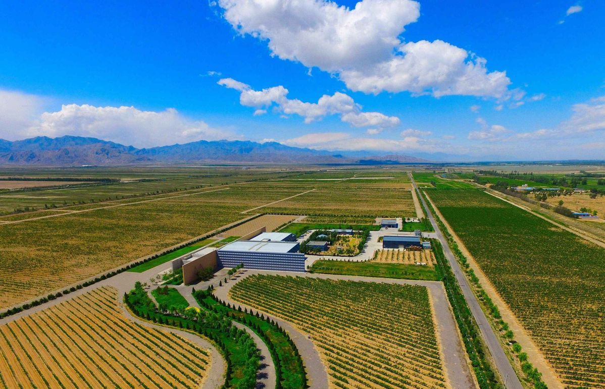 In Ningxia, a mountain is transformed