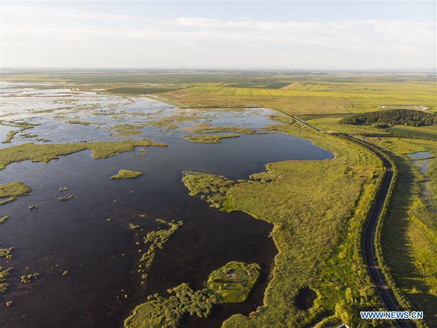 Scenery of wetlands in Heilongjiang