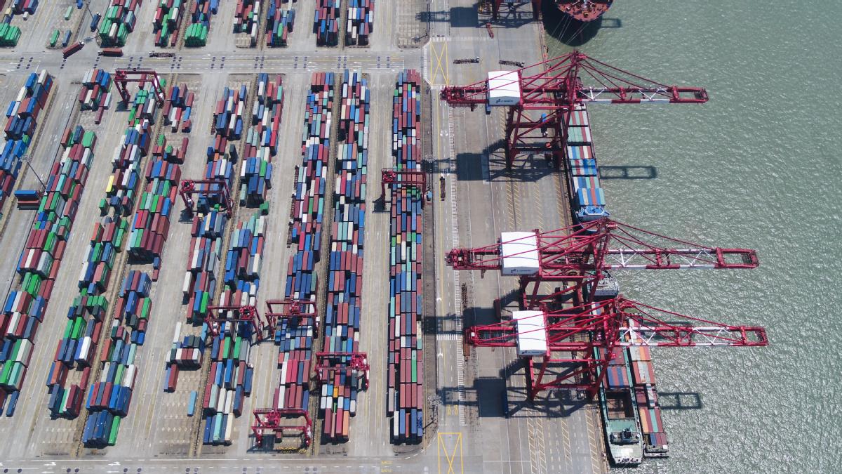 Lingang area pushes ahead novel growth