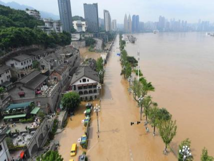 Chongqing section of Yangtze River sees its worst flood since 1981
