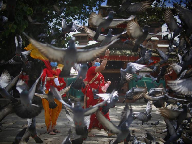 Nepalese Hindu women in traditional attires feed pigeons during Teej festival