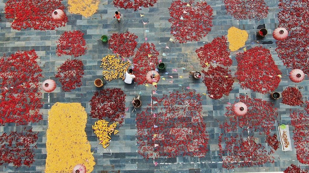 Guizhou villagers dry autumn crops