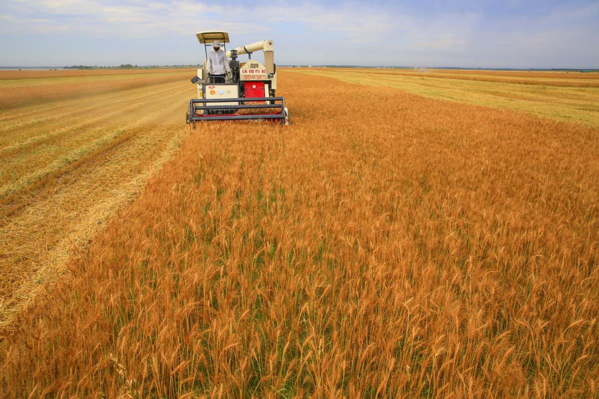Saving energy, grain crucial for China