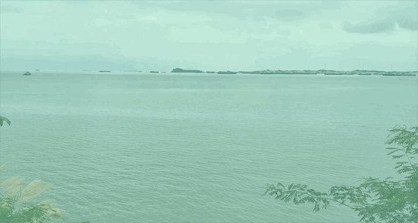 Flood recedes in Poyang Lake