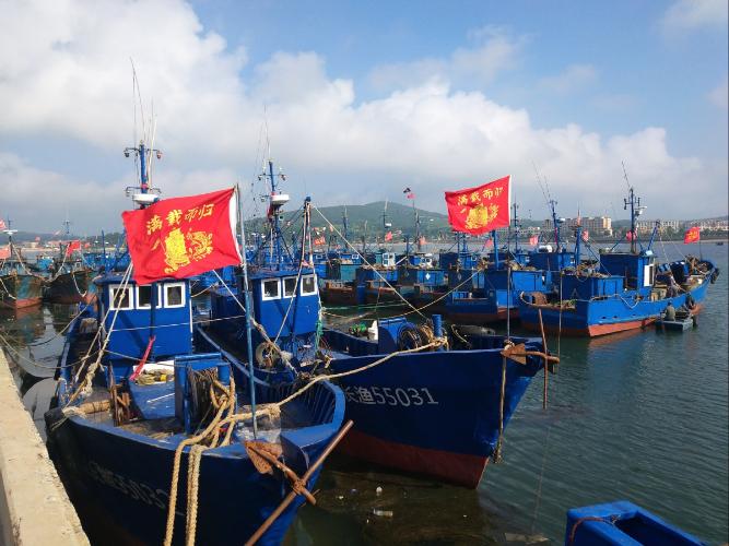 Typhoon Bavi lands near border with DPRK