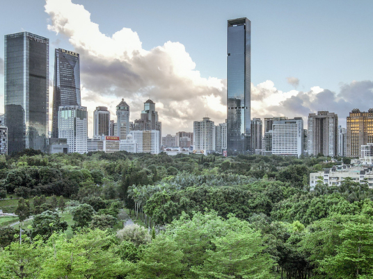 Shenzhen posts faster trade growth in July