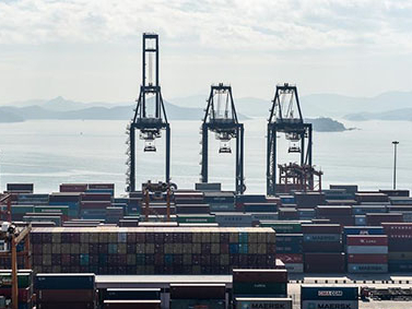 More exports from Chinese mainland processed at ports in Guangdong instead of HK