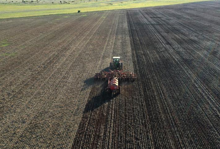 China suspends barley imports from Australian company