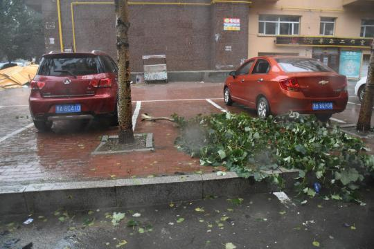 Over 100 flights canceled in Heilongjiang due to typhoon