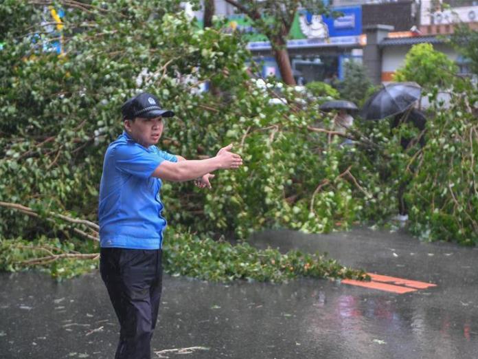 Typhoon Maysak affects 452,700 people in NE China's Heilongjiang