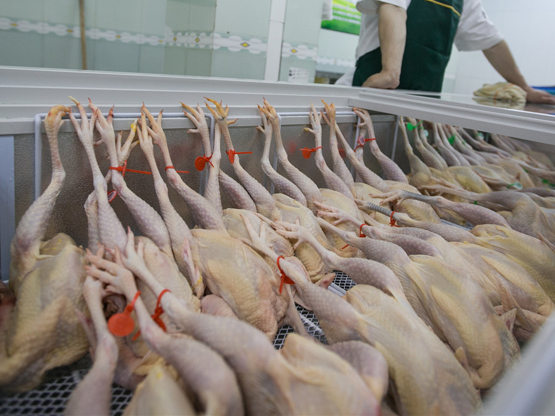 China's Hong Kong suspends import of poultry products from Tyumenskaya Oblast in Russia